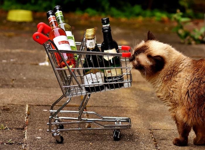 まとめ|買い物代行は日常生活の「ついで」でできる、主婦にオススメの副業