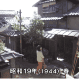 【まんぷく】第19話の見逃し配信動画の無料視聴方法とあらすじ・ネタバレ感想を紹介