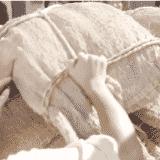 【まんぷく】第40話の見逃し配信動画の無料視聴方法とあらすじ・ネタバレ感想を紹介